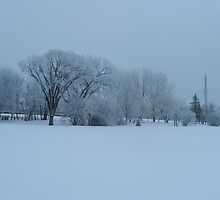 Winter Scene  by winnipegmike