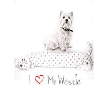 "Pet Pal Westie iPhone Case "" I Love My Westie ""  by Love Through The Lens"