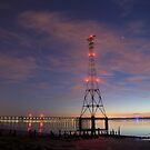 Pylon at Night by Cliff Williams