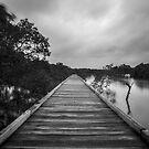 Path to the rain  by Liam Robinson