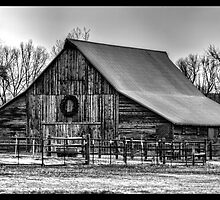Rural Beauty in Winter by Timothy S Price