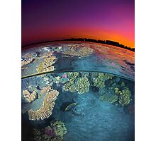 Dusk at the Red Sea Reef Photographic Print