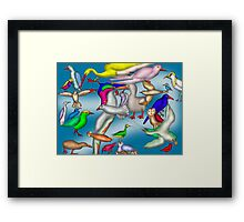 Lord Howe Island Birds Framed Print