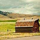 Powell County (Montana) Barn by Bryan D. Spellman