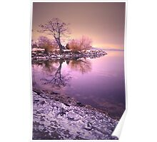 Winter Light Reflected Poster