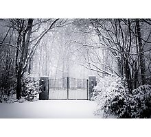A gate in the middle of the wilderness Photographic Print