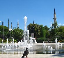 Near the fountain by Maria1606