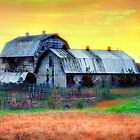 Vintage Barns North Carolina II by Dan Carmichael