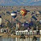 Balloons Over Lake Havasu by tvlgoddess