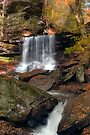 First Fallen Leaves at B. Reynolds Waterfall by Gene Walls