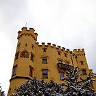 Hohenschwangau Castle by Ben Sheahan