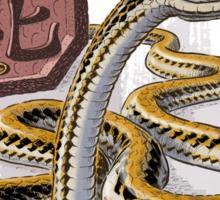 Chinese Zodiac - Year of the Snake Sticker