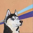 Siberian Husky by NancyBenton
