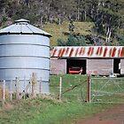 Old grain silo by Cameron Hicks