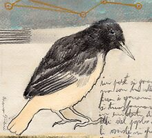 Black Bird Singing by sivieriart