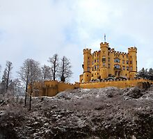 Schwangau Castle by Ben Sheahan