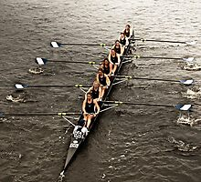 The Head Of The Charles Regatta 1 by d1373l