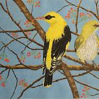 Oriole Pair  by NatureLover81