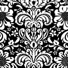Black & WHite Vintage Floral Damasks by artonwear