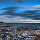 Winter Beach by Carolyn  Fletcher