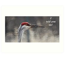 I told you so! Art Print