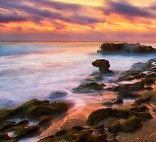 Coral Cove Sunrise by cesstrelle