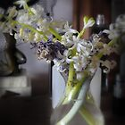 Hyacinths in Vase  by scarletjames