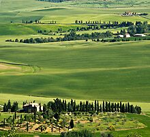 Around Pienza by vivsworld