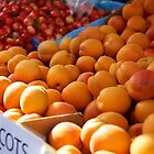 early apricots by thvisions