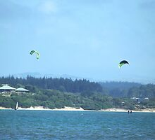 Kitesurfers at Mangawhai, New Zealand by amypie71