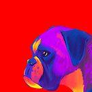 Boxer (Red) by shakusaurus