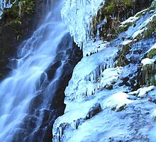 Ice Falls by Barbara  Brown