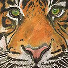 Sumatran Tiger by Colin Shepherd
