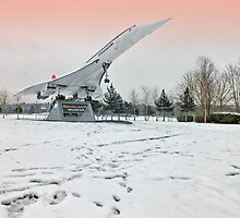 Heathrow Concorde - Brooklands Museum by Colin J Williams Photography