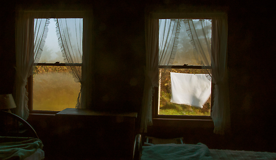 Windows Scape, Petit Manan Maine by Dave  Higgins