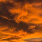 Tangerine Sky by J. D. Adsit