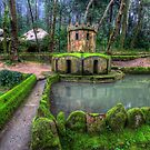 Royal Duck House Sintra by manateevoyager