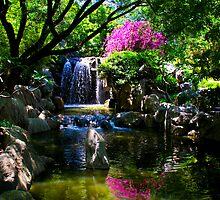 Chinese Garden of Friendship #3 by DAJPowell