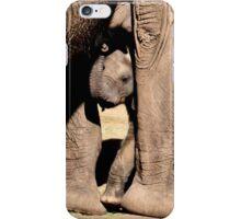 Zuri - iPhone - iPod Case iPhone Case/Skin