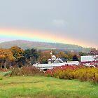 after rain by John Carey