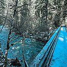 Brice Creek by Matt Emrich