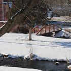 Mill Brook by Brenda Dickie