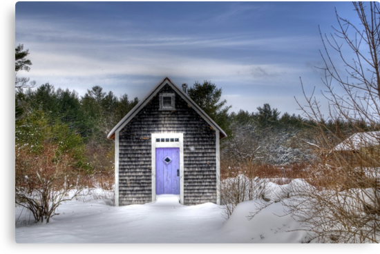 The Purple Door by Monica M. Scanlan