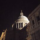 St Paul's Cathedral By Night by Neil Evans
