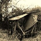 Old Cart by LivKelsey
