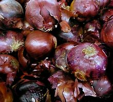 Red Onion by OneSmartKitty