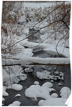 Snowy Creek by BarbL