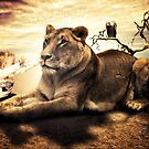 Lionheart by Erik Brede