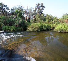 The Daly River drains under Beerboom Crossing by Michelle Jonker