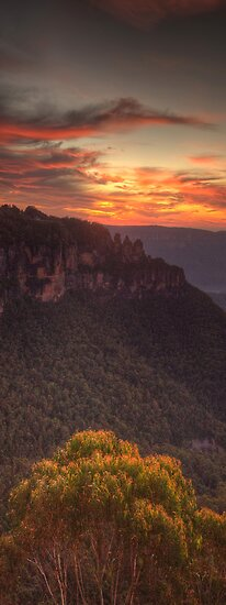 Morning LIght - Blue Mountains World Heritage Area, Australia - The HDR Experience by Philip Johnson